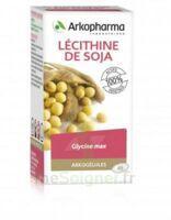 Arkogélules Lécithine de soja Caps Fl/150 à Vierzon