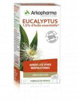 Arkogélules Eucalyptus Gélules Fl/45 à Vierzon