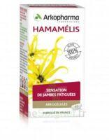 Arkogélules Hamamélis Gél Fl/150 à Vierzon