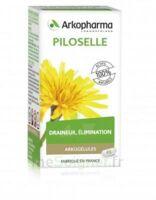 Arkogélules Piloselle Gélules Fl/45 à Vierzon