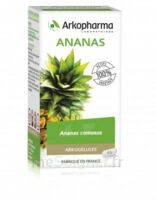 Arkogélules Ananas Gélules Fl/45 à Vierzon
