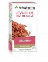 Arkogélules Levure De Riz Rouge Gélules Fl/45 à Vierzon