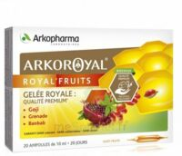 Arkoroyal Royal'Fruits Gelée royale Goji Grenade Baobab Solution buvable 20 Ampoules/10ml à Vierzon