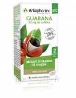 Arkogélules Guarana Bio Gélules Fl/45 à Vierzon