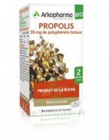 Arkogélules Propolis Bio Gélules Fl/45 à Vierzon
