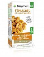 Arkogélules Fenugrec Bio Gélules Fl/40 à Vierzon