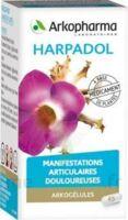 ARKOGELULES HARPAGOPHYTON Gélules Fl/150 à Vierzon