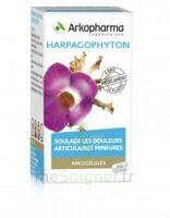 ARKOGELULES HARPAGOPHYTON, 45 gélules à Vierzon