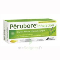 PERUBORE Caps inhalation par vapeur inhalation Plq/15 à Vierzon