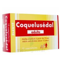 COQUELUSEDAL ADULTES, suppositoire à Vierzon