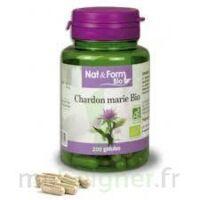 Nat & Form bio Chardon marie à Vierzon