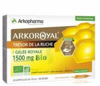 Arkoroyal Gelée royale bio 1500 mg Solution buvable 20 Ampoules/10ml à Vierzon