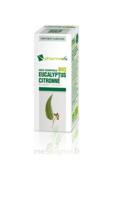 Huile Essentielle Bio Eucalyptus Citronné à Vierzon