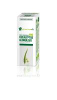 Huile Essentielle Bio Eucalyptus Globuleux à Vierzon