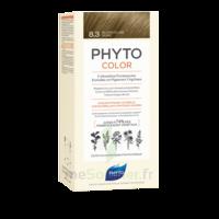 Phytocolor Kit coloration permanente 8.3 Blond clair doré à Vierzon