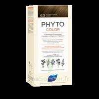 Phytocolor Kit Coloration Permanente 6.3 Blond Foncé Doré à Vierzon