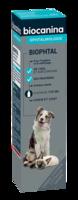 Biophtal Solution externe 125ml à Vierzon
