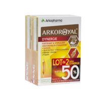 Arkoroyal Dynergie Ginseng Gelée royale Propolis Solution buvable 2B/20 Ampoules/10ml à Vierzon