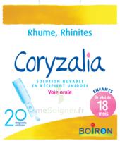 Boiron Coryzalia Solution buvable unidose B/20 à Vierzon