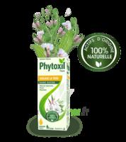 Phytoxil Toux Sans Sucre Sirop Adulte Enfant +2 Ans Fl/120ml à Vierzon