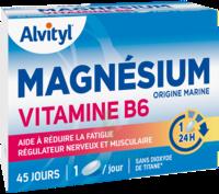 Govital Magnésium Vitamine B6 Comprimés B/45 à Vierzon