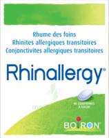 Boiron Rhinallergy Comprimés B/40 à Vierzon