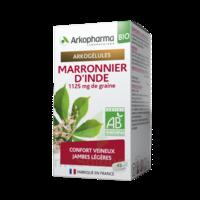 Arkogélules Marronnier D'inde Bio Gélules Fl/45 à Vierzon