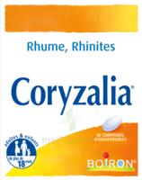 Boiron Coryzalia Comprimés Orodispersibles à Vierzon
