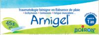 Boiron Arnigel Gel T/45g à Vierzon